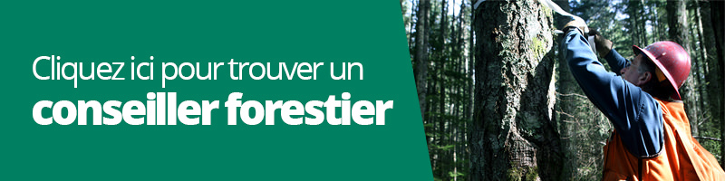 trouvez-conseiller-forestier